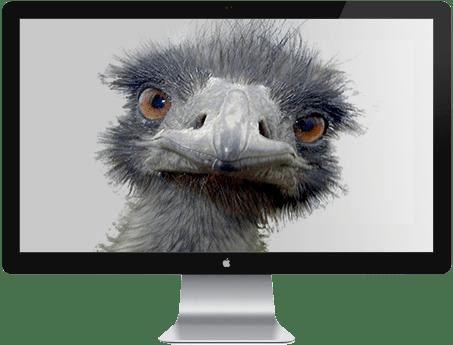 emu tv